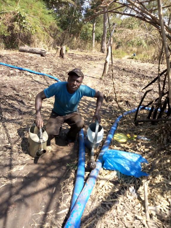 Benin Pendjari Agriculture Project - Kouarfa
